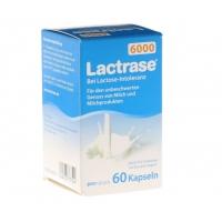 【国内现货】Lactrase乳糖酶 婴儿奶伴侣 6000单位乳糖不耐受 60粒装